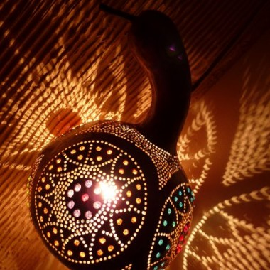 kwiaty tykwa lampa
