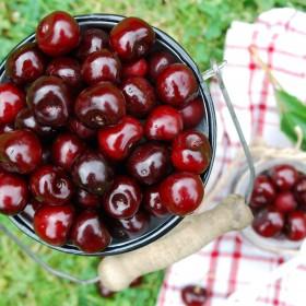 Lato w kolorze cherry