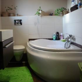 Łazienka z dodatkami zieleni