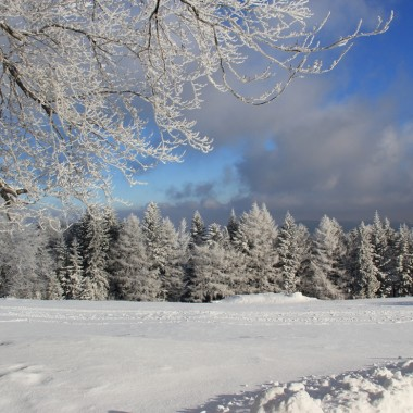 Zima deccoruje:)))