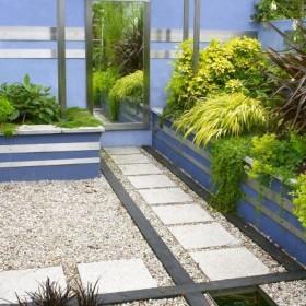Rośliny i ogród